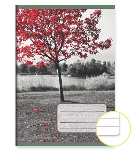 Zošit 444 EXTRA – 40 listový – linkovaný 8 mm s okrajom – Strom